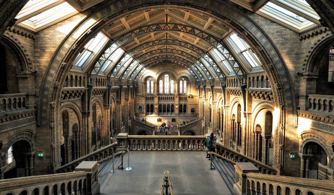 Inside the London Natural History Museum