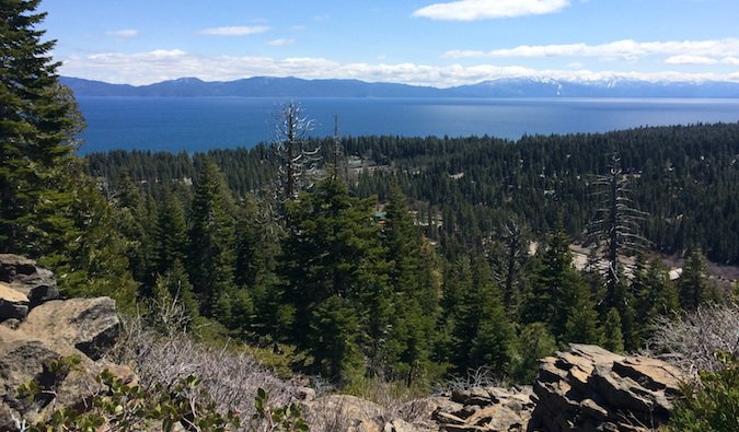 the beautiful forests around lake tahoe