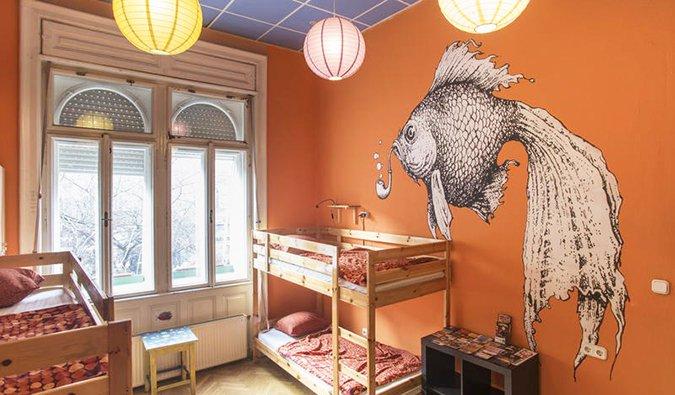Big Fish Hostel, Budapest