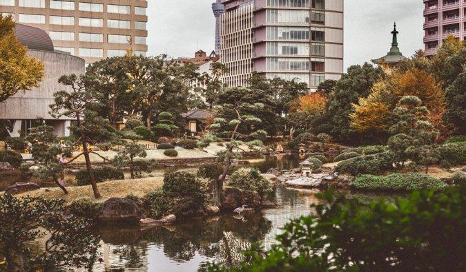 a peaceful garden in Tokyo, Japan