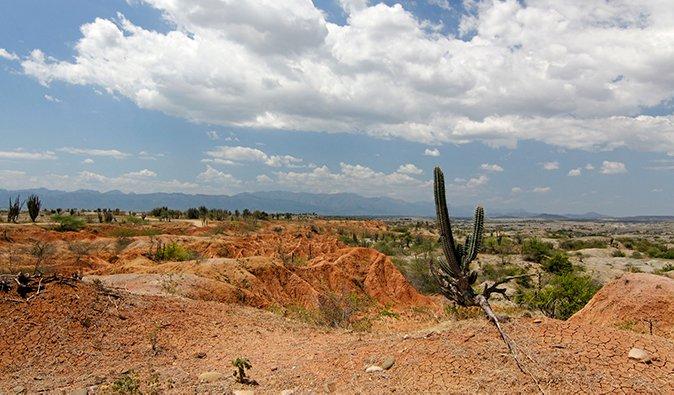 a cactus and bright red sand in Tatacoa Desert; photo by descubriendoelmundo (flickr:@descubriendo-el-mundo