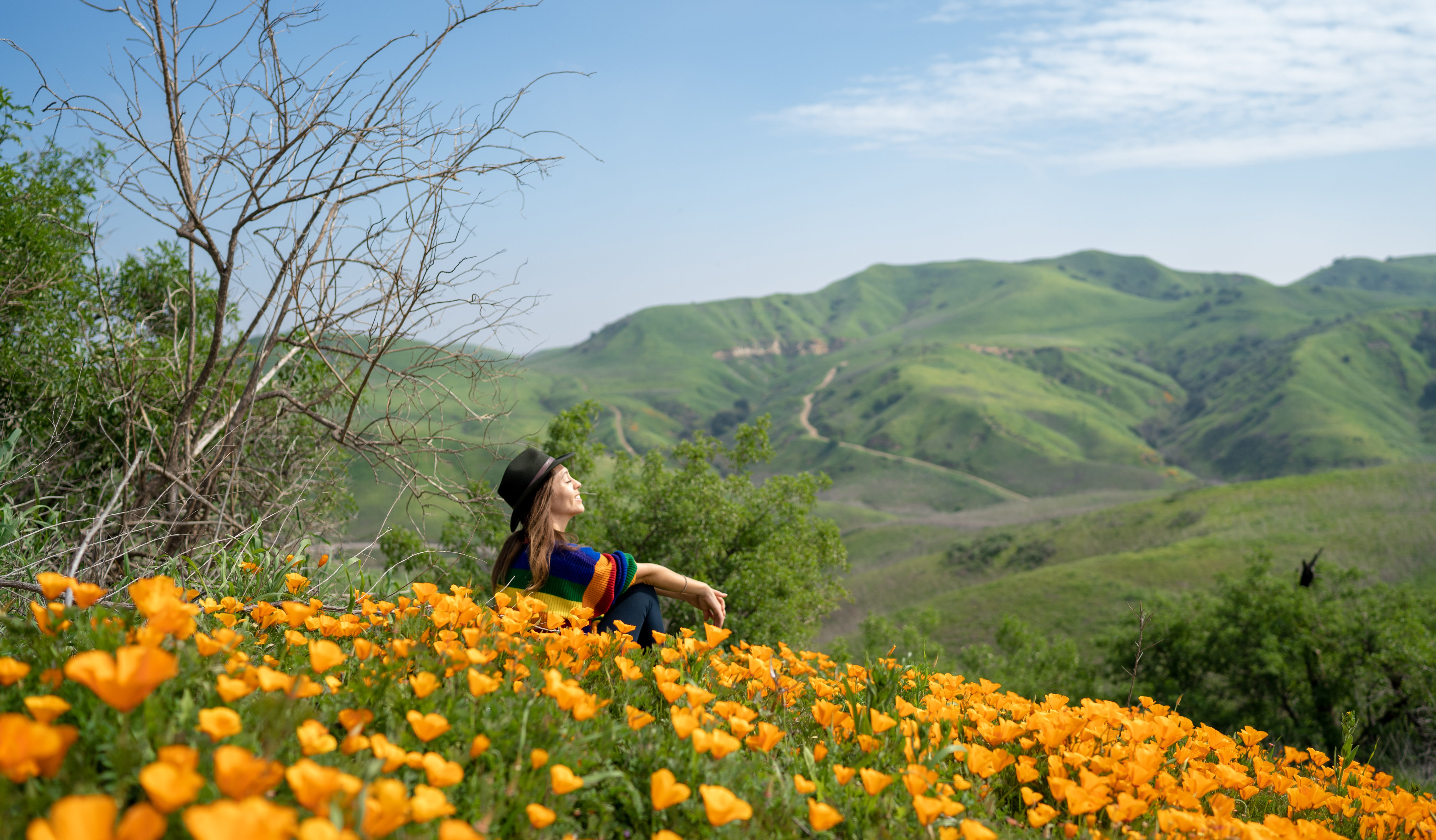 Kristin Addis sitting in a bed of sunflowers against a mountain backdrop