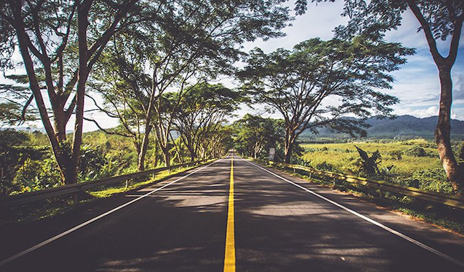 driving down a road with tall trees hanging overhead