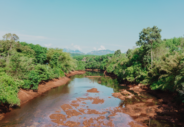Khao Sok River view
