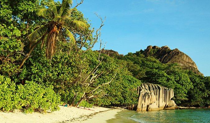 a tropical beach scene in the Seychelles