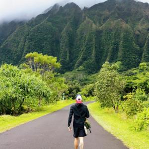 Man walking with bag towards lush mountainous Hawaiian landscape