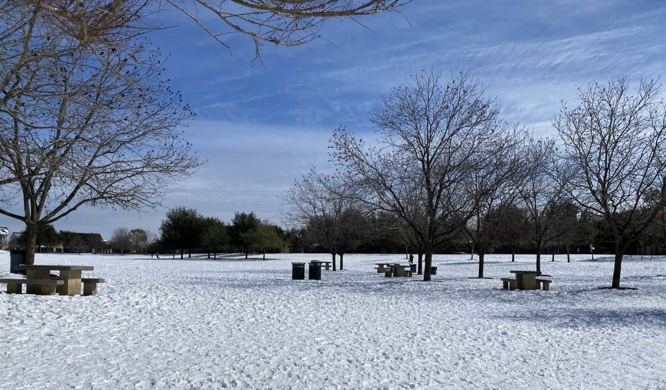 A snowy park in Austin, Texas