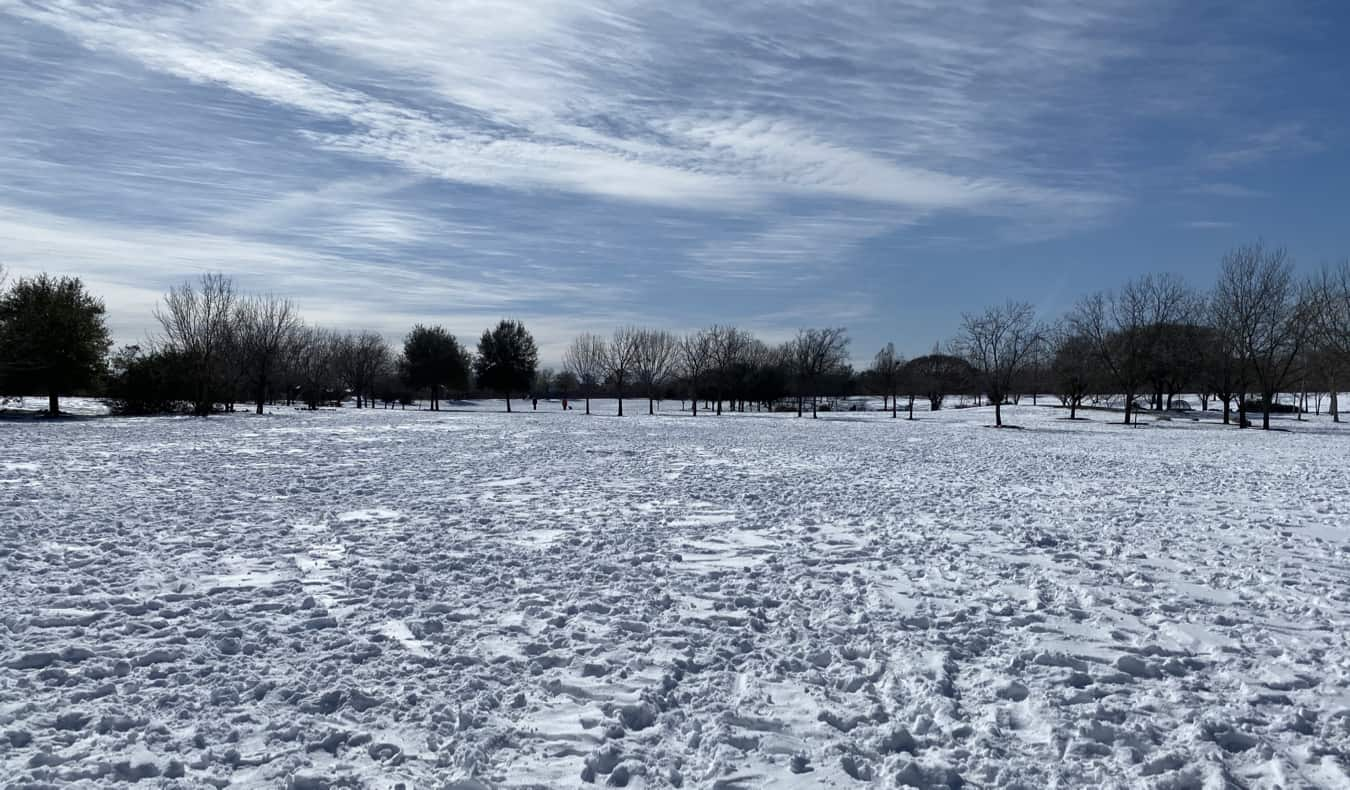 Snow and blue skies in Austin, Texas during the snowstorm